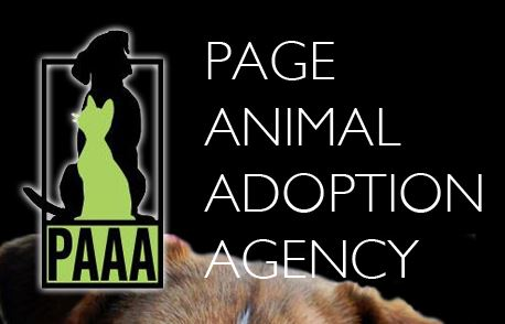 Page Animal Adoption Agency
