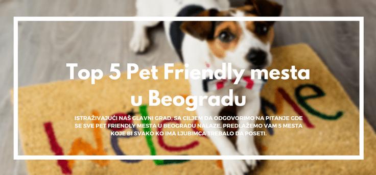 Top-5-pet-friendly-mesta-u-beogradu-pas