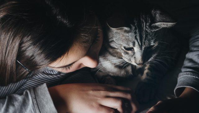 devojka mazi mačku