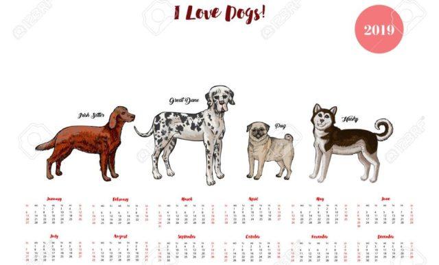 kalendar-sa-psima-planer-za-pse