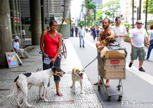 moradores de rua e seus cães 10
