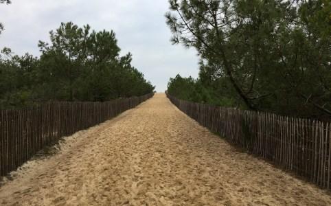 chemin-plage-de-la-garonne