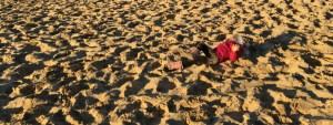 Que faire? Roulades-dune-du-pyla