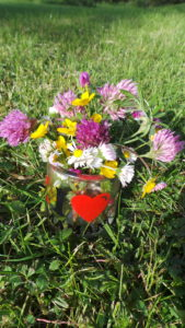poésies, fleurs des champs