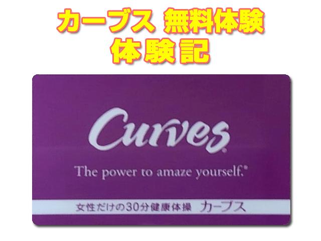 curves_muryoutaiken