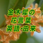 kinmokusei_hanakotoba