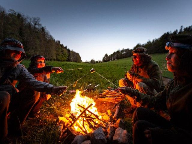Des Chamallow grillés au feu de bois