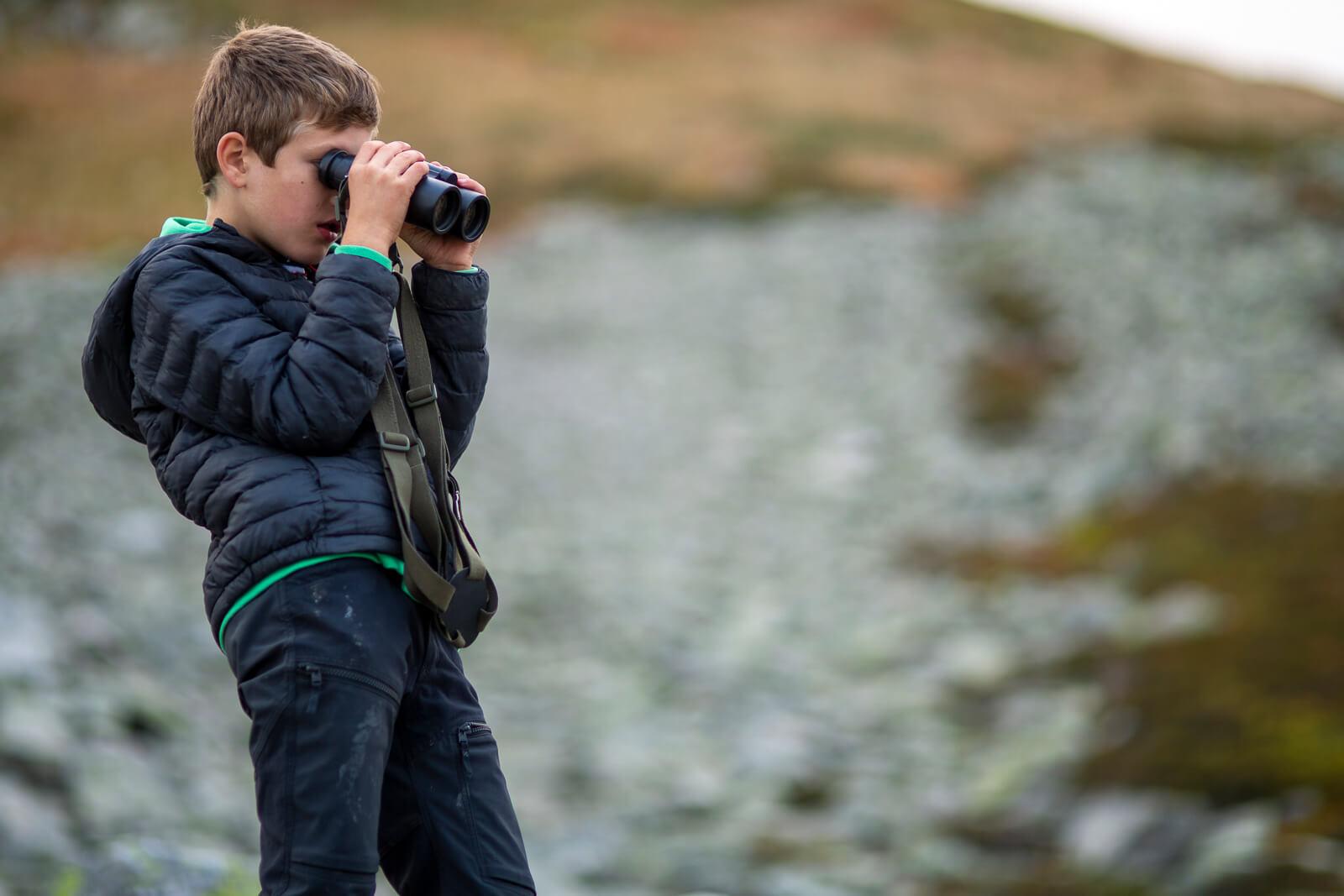 Observer des animaux sauvages aux jumelles