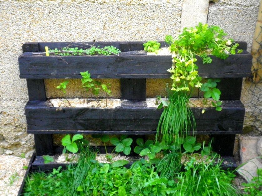 utilisation de palettes au jardin