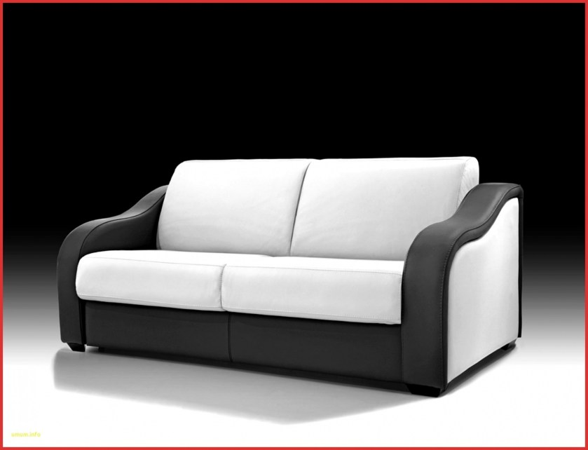 grands coussins de canapé