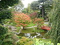 petit jardin japonais miniature