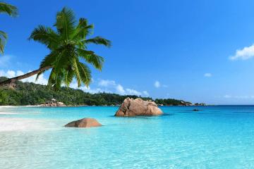 piscine avec plage en sable