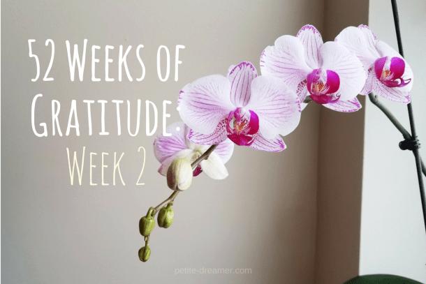 52 Weeks of Gratitude - Week 2 | Petite Dreamer