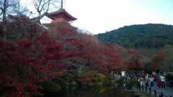 20161124 Kyoto 32
