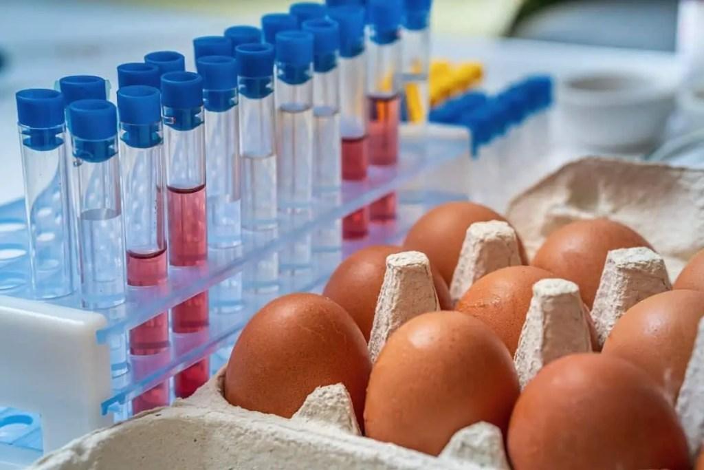 salmonellose et listeriose sont les deux maladies que risque la femme enceinte en mangeant des oeufs à la coque