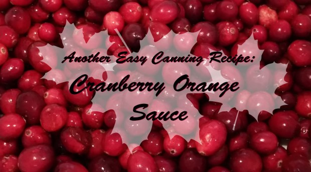 Cranberry Orange Header