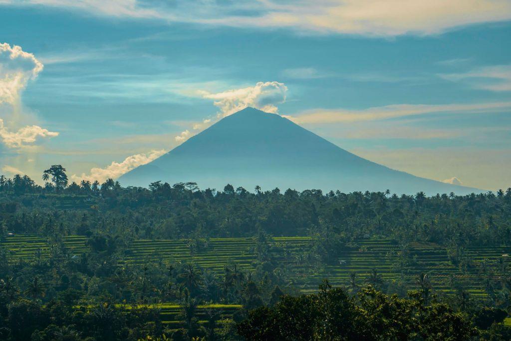rizières et montagne à Bali