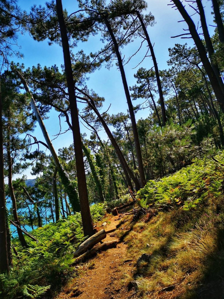 sentier GR34 presqu'île de Crozon