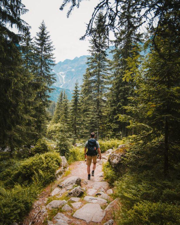 homme qui marche dans la forêt pour voyager responsable