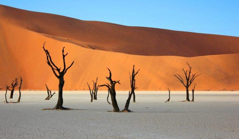 désert de Namib en Namibie