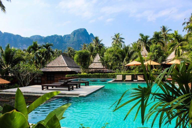 palmiers transats, piscine en thaïlande