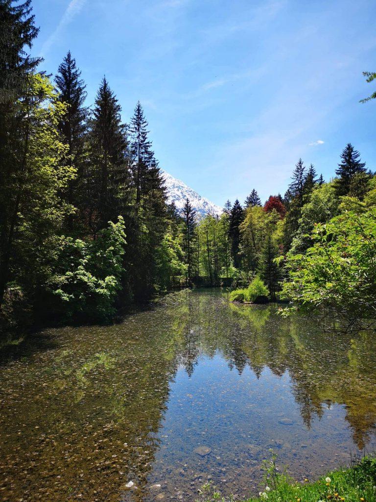 étang montagne sapins