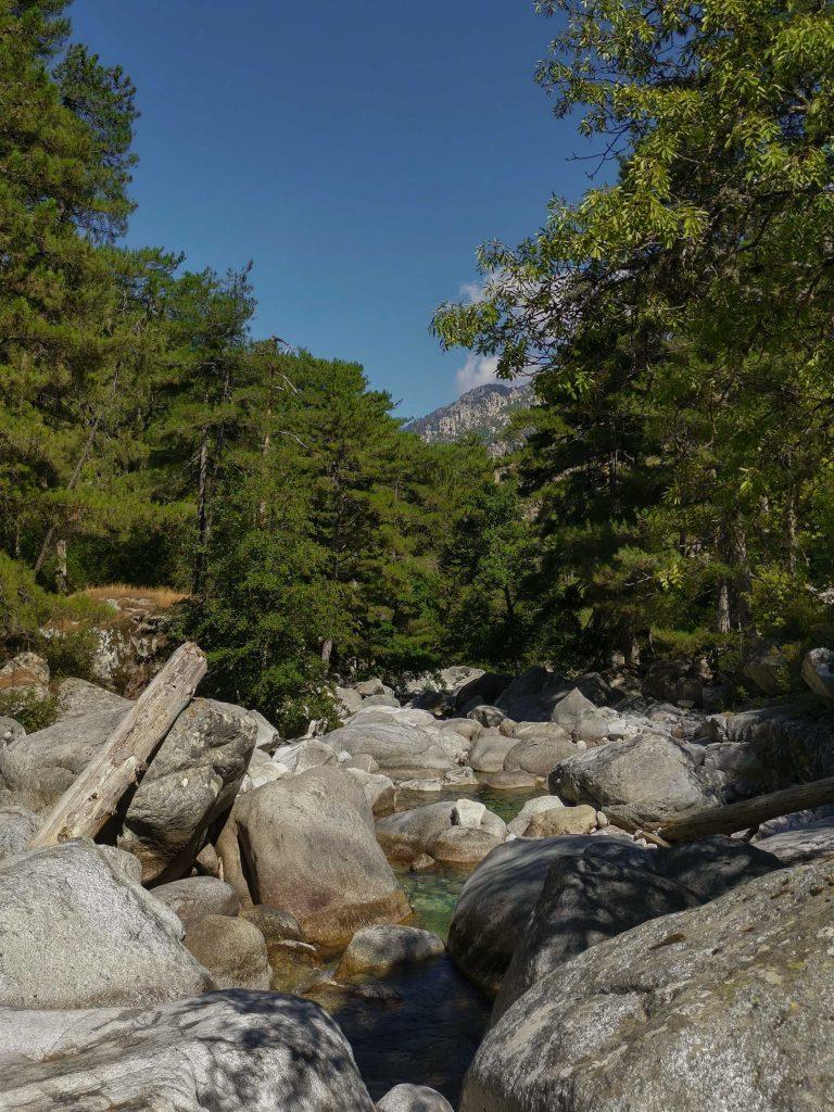 gorges de la restonica : vasques, rochers, arbres et montagne