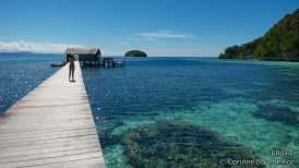 Sorido Bay jetty, Kri Island, Raja Ampat. Papouasie, Indonésie, juillet 2012.