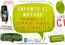 Eveiller la curiosité des enfants avec la nature
