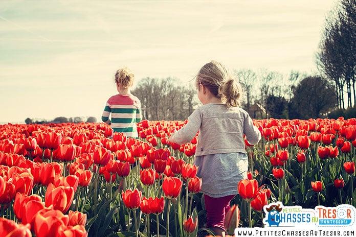 des enfants se promène dans un champs de tulipe