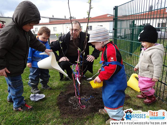 Enfant qui plante un arbre