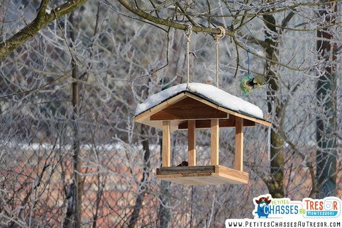 Mangeoire pour oiseau en hiver