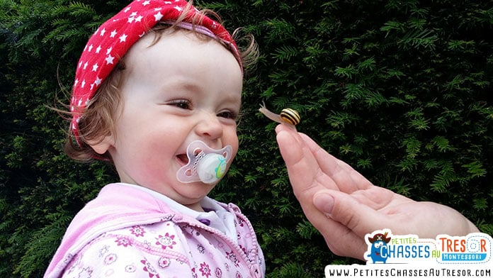 un enfant découvre un escargot dans la nature