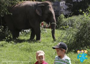 Petits Globetrotteurs Asie Enfants