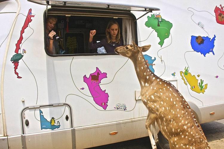 I drive a dream - tour du monde en famille en camping car