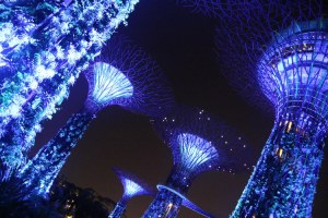 Gardens by the Bay - Family visit singapore