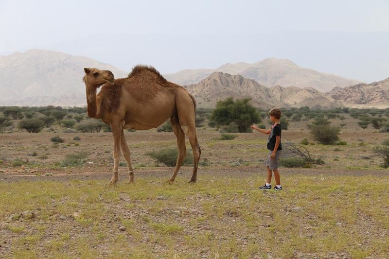 Petits Globetrotteurs Oman