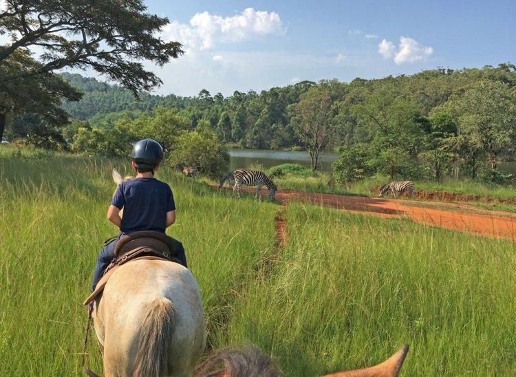 randonnée à cheval swaziland