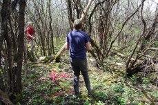 petkid-walk-in-the-woods_DSC_0964