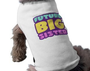 Big Sister Brother Pet Shirts for dogs and cats