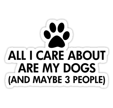 Cats and Dogs Pet Lovers Saying Stickers