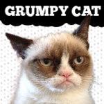Grumpy Cat Store