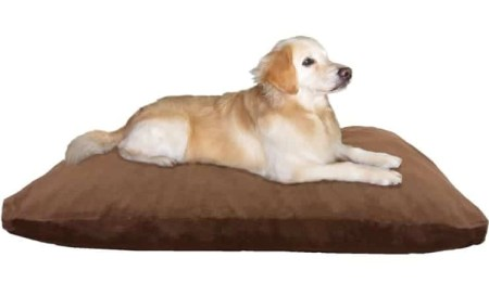 6 Dogbed4less Jumbo Memory Foam Dog Bed Pillow