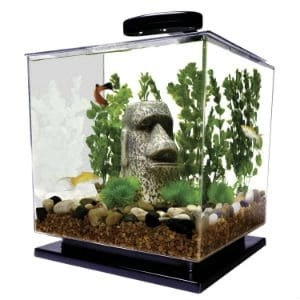 tetra-29095-cube-aquarium-kit
