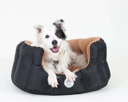2 Loving Care Pet Products Ultra Supreme Pet Bed