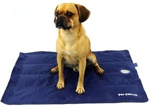 PlayaPup Pup Chiller Cooling Mat