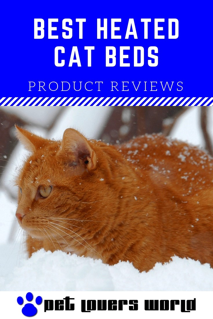 Best Warming Cat Bed Reviews Pinterest Image
