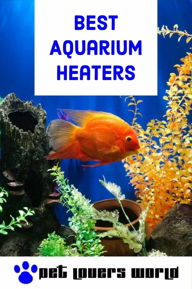 Best Fish Tank Heater Reviews Pinterest Image