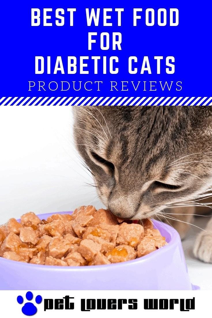 Non Prescription Food For Diabetic Cats Reviews Pinterest