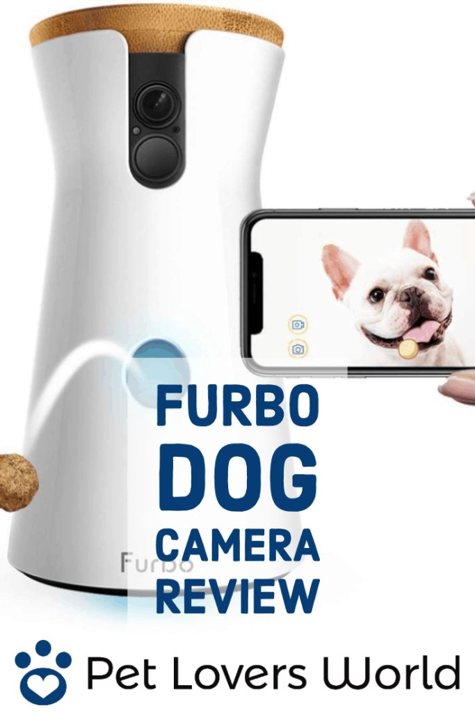 Furbo Dog Camera Review Pinterest Image